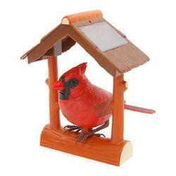 [아울렛] 아웃도어브리지(Nothern Cardinal)