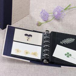 [Mellow]card file SR105-02