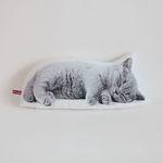 sleepy kitten (L size)