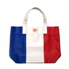 paris travel bag