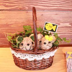 아기고양이커플 바스켓