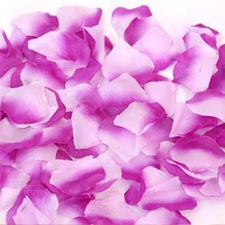프로포즈 꽃잎(라벤더)
