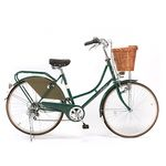 BIRKIN Dutch Bike series Shimano 6 speed Green 더치바이크 버킨 클래식