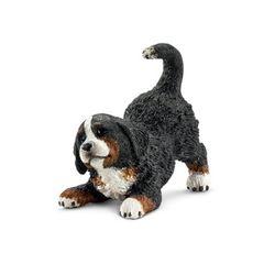 버니즈 마운틴 강아지 2014