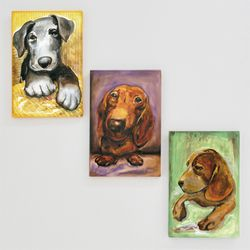[HOMEBAO] 홈바오 dogs