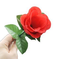 나타나는장미(Appering Rose)