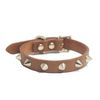 RINO COLLAR TAN 1.5