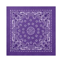 22inch bandana purple