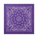 22inch bandana purple