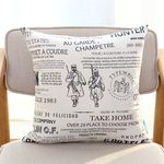 PM) SIMPLE VINTAGE CUSHION - The barber of siberia