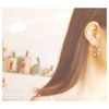 the first snow (���� earring)
