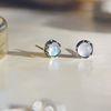 ���༺ ������ crown earring (6�� ź��)