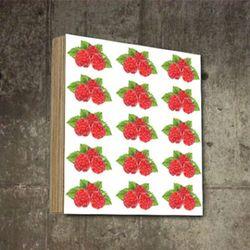 매장인테리어 빈티지 과일 열매 액자 그림  SQ-456