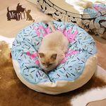 미스터펫 애견방석 도넛패닉 블루 M
