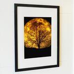A4사이즈 FA017-나무 언덕위의 달(Moon)