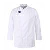 (AJ1587) hidden cool mesh point chef coat white