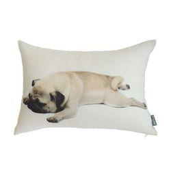 sleeping pug 배게커버 (50x70)