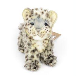 6356번 아기설표범 Snow Leopard Cip Sitting