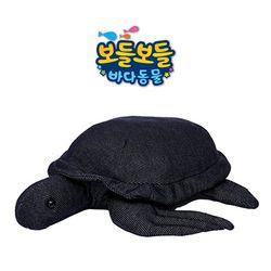 보들보들 바다동물 거북이