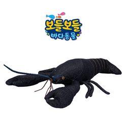 보들보들 바다동물 가재