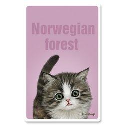 [Re:Pet] 5000mAh 케이블 일체형 보조배터리 노르웨이