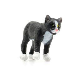 249029 맹스크고양이 Manx Cat