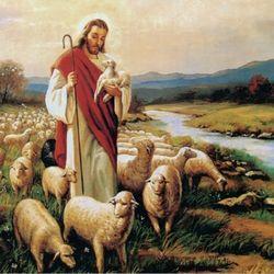 1000pcs 예수와 양떼 (PL1220)
