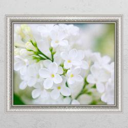 cm282-라일락꽃향기맡으며창문그림액자