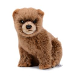7037번 곰 Bear Cub Brown24cm.L