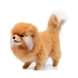 7018번 포메라니안 Pomeranian Dog28cm. H