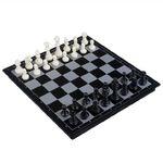 흑백 자석 체스 - 대형