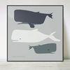 Whales Blue no.03