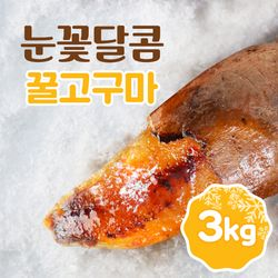 눈꽃달콤 아이스 군고구마 꿀고구마 3kg