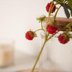 딸기픽 소 모조과일 모형과일