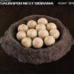 알둥지모형 용각류
