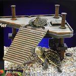 베니스 거북이쉼터 (중)/거북다리 놀이터 일광욕
