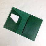 neat.A Passport Case . Green