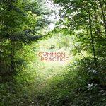 안승준 - Common Practice