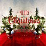 크리스마스 트리세트 30cm 장식 전구 포함