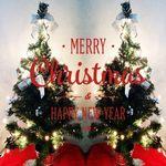 크리스마스 트리세트 50cm 장식 전구 포함