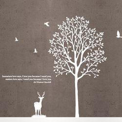[나무]향기나무 - 사슴