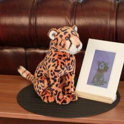 Jaffa Orange Leopard - 자파오렌지 레오파드 (표범)