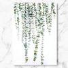 북유럽 인테리어 식물 액자 블랙 잭 캔버스 6호