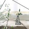 Nude Vase (H155) + Glass Vase
