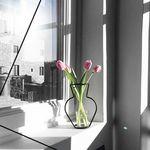 Nude Vase (H200) + Glass Vase