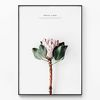메탈 모던 꽃 플라워 식물 액자 Proteus [대형]