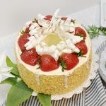 과일 케익 FM298-0503