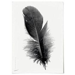 패브릭 천 포스터 F010 모던 깃털 no.2 [중형]