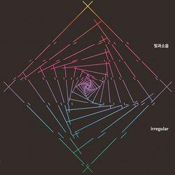 빛과소음 - lrregular