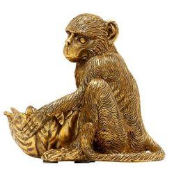 CP 골든 원숭이 티라이트
